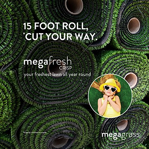 12' New Decor - MegaGrass New 15' Roll Wholesale Custom Cut 15Ft x 12Ft Artificial Grass for Lawn and Landscaping Outdoor or Indoor Green Faux Fake Grass Decor | 180 SqFt | 1.6
