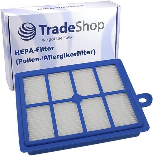 Filtro HEPA para aspiradora AEG/Electrolux SuperCyclone Super Pro System Pro Twinclean UltraActive UltraCaptic UltraFlex UltraOne UltraPerformer UltraSilencer 3000: Amazon.es: Hogar