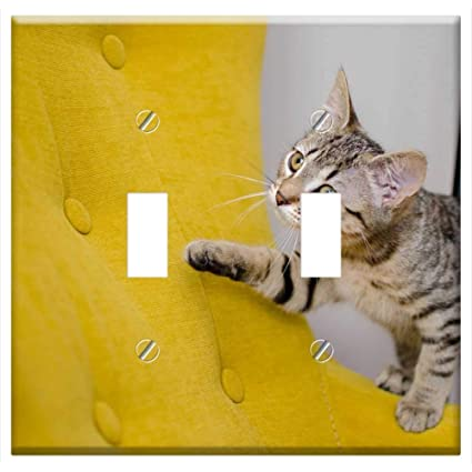 Switch Plate Double Toggle - Cat Bury Cat Domestic Cat