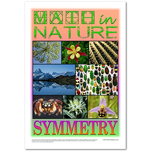 Math in Nature Poster: Symmetry