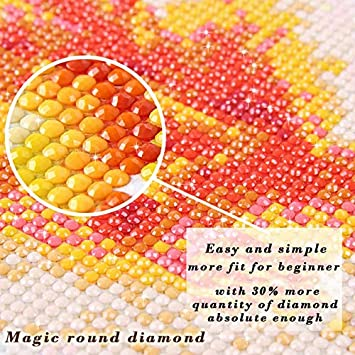 5D Diy Diamond Peinture Paysage Johnny Hallyday Diamond Peinture Plein Carr/é//Rond Peinture Accessoires Diamant Pad Lumi/ère,30x40cm