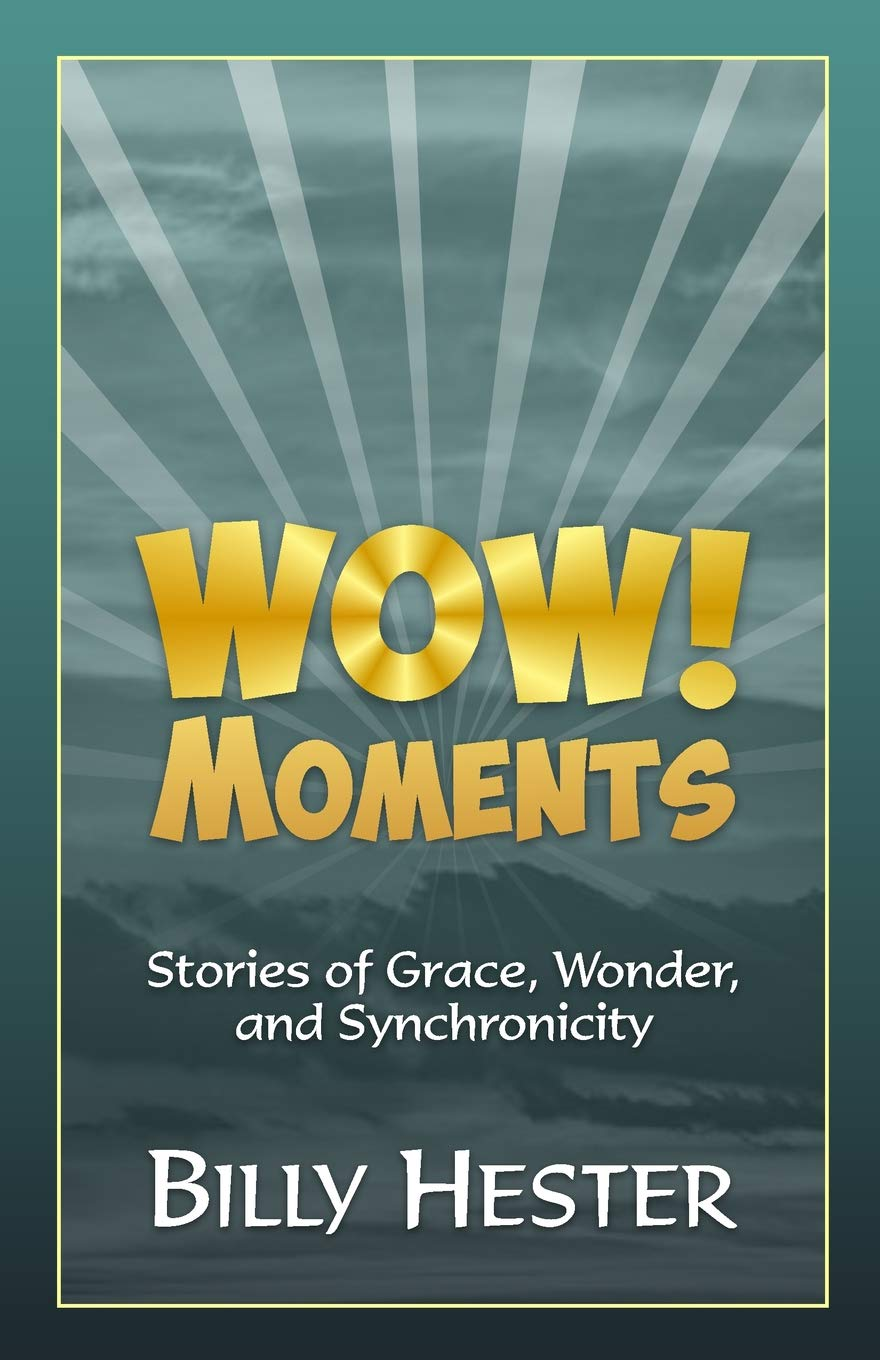 Download Wow! Moments: Stories of Grace, Wonder, and Synchronicity ebook