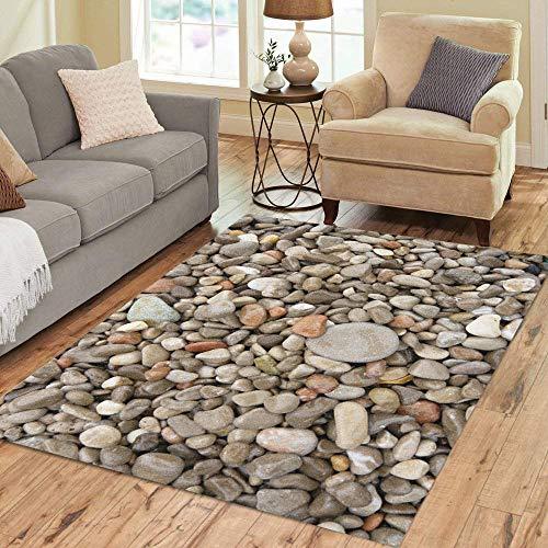 Pinbeam Area Rug Neutral Beach Pebbles Colors Dry Earth Erosion Form Home Decor Floor Rug 5' x 7' Carpet (Nature Area Rugs Themed)