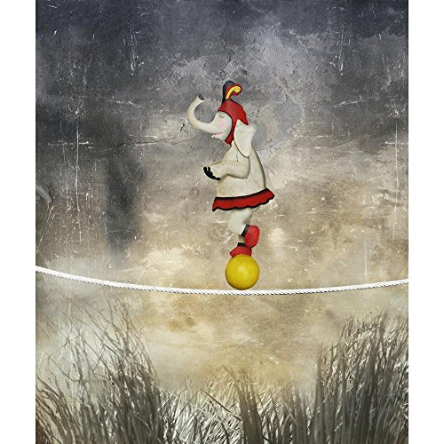Pitaara Box Female Elephant Dressed Circus Balancing On A Rope Peel & Stick Vinyl Wall Sticker 20 X 23.7Inch ()