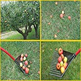 ROOT ASSASSIN RK-001 58-Inch Yard & Garden Rake