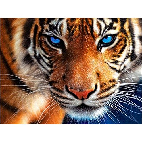 DIY 5D Diamond Painting by Number Kits, 11.8''x13.8'' Full Drill Crystal Rhinestone Embroidery Pictures Arts Craft for Home Wall Decor Gift,Aggressive Tiger