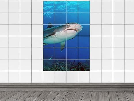 Piastrelle adesivo piastrelle immagine animali squalo bianco sotto