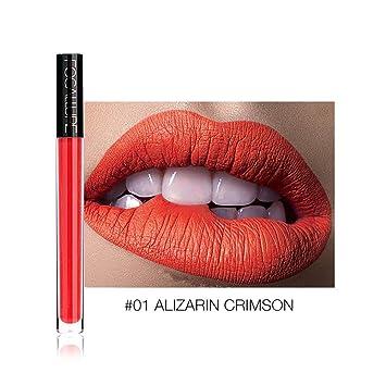 820e9d007f01 Amazon.com : Lip Gloss Maserfaliw Matte Lip Gloss Waterproof Long ...