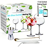 Gin Glasses Set Of 2 Cocktail Making Box Set | Kit Includes Reuseable Metal Straws, Stirrer, Shot Pourer and Cleaner | Balloon Crystal Shaped Stemless Copa Glass | Gin and Tonic, Martini, Wine