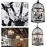 Crystal Pendant Light,2013newestseller 4 Lights Birds Cages Ceiling Chandeliers Fixtures Vintage Iron Birdcage Crystal Chandelier Light Lamp Restaurant Home Shop Decor Incandescent Lighting (Black)