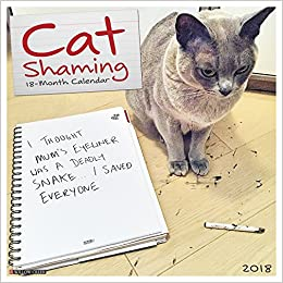 Cat Shaming 2018 Calendar