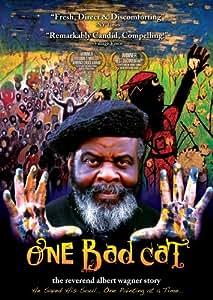 One Bad Cat