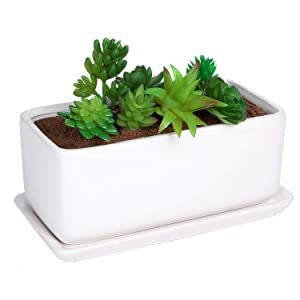 Liry Products 10 inch Rectangular White Ceramic Planter Pot Succulent Cactus Herb Flower Container Window Box Saucer Removable Drip Tray Base Drain Holes Home Office Indoor Outdoor Garden Desktop