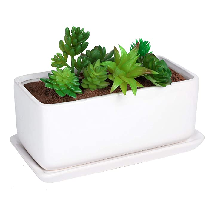 The Best Rectangular Planter With Tray Desktop