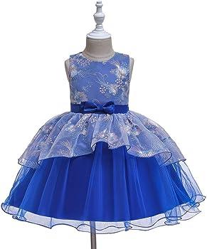 Berimaterry Niñas Cenicienta Disfraz Carnaval Traje de Princesa ...