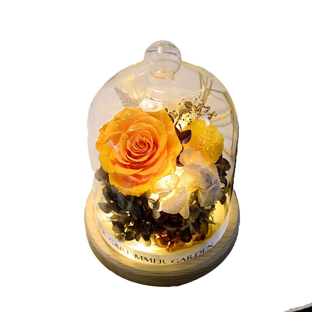 JHNEA La Bella Y La Bestia Rosa Cristal Enchanted Rose Luz ...