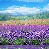 5x7ft Photography Background Lavender Scene Personal Photo Backdrops Props for Studio 1.5x2.2M No Wrinkles Cotton Cloth (Update Material)