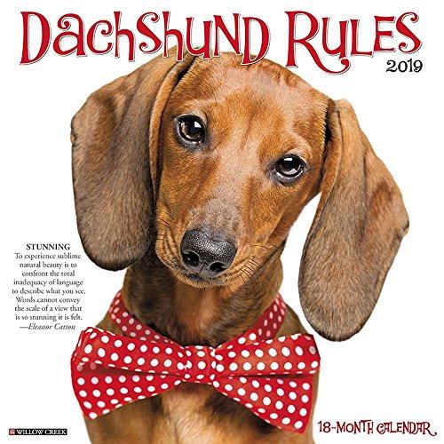 Dachshund Rules 2019 Wall Calendar (Dog Breed Calendar)