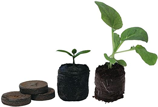 Jiffy de turba prensada para germinar semillas diámetro 33 mm
