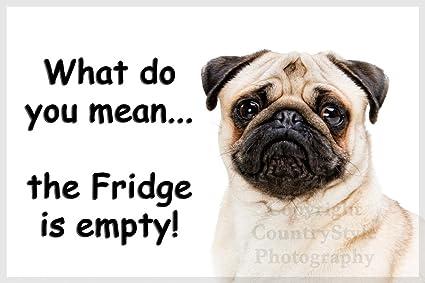 Pug Pet Dog Funny Fridge Magnet Christmas Gift New