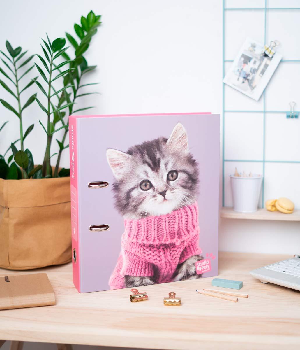 Archivador con compresor Studio Pets Cats 2019
