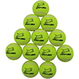 EXPAWLORER Dog Squeaky Tennis Balls for Dogs Set of 12 for Pet Playing and Training 2.5""