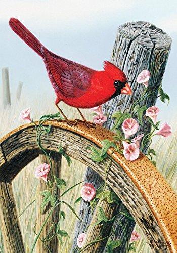 Briarwood Lane Cardinal Morning Glory Spring Garden Flag Wagon Wheel Floral Birds 12.5