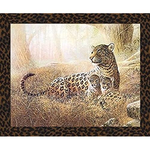 Cheetah Print Framed Art: Amazon.com