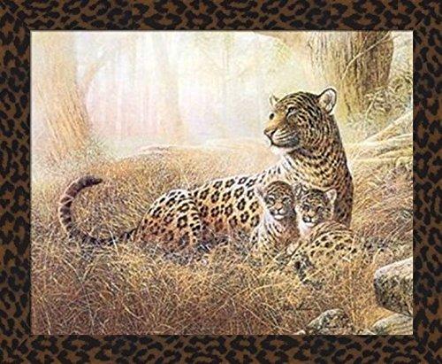 safari pictures - 7