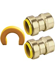 Webstone 26203WKIT Propush 3/4-Inch x FPT Straight Connector Kit