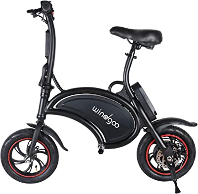 Windgoo Folding Electric Bike