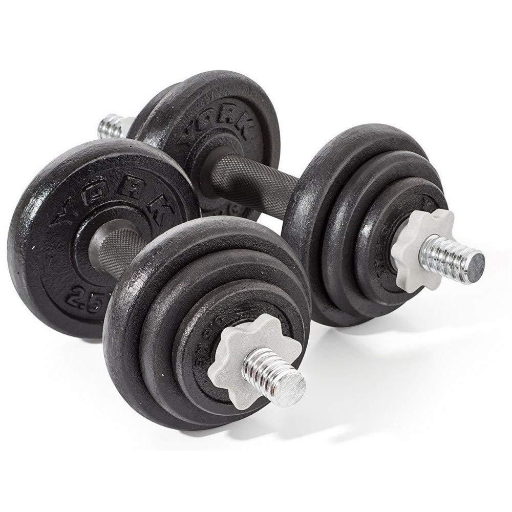TrAdE shop Traesio® Set Kit de mancuernas con pesas Fitness Gimnasio de 15 20 30 kg Perfect Curl - 30 kg: Amazon.es: Hogar