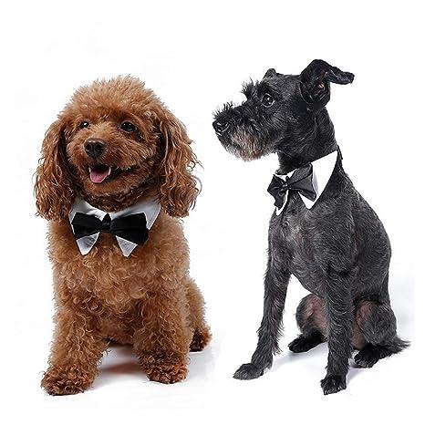 Corbata de Lazo para Perros, Mascotas Formales Corbata de ...