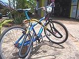 Carver Surfboard Bike Rack - Shortboard