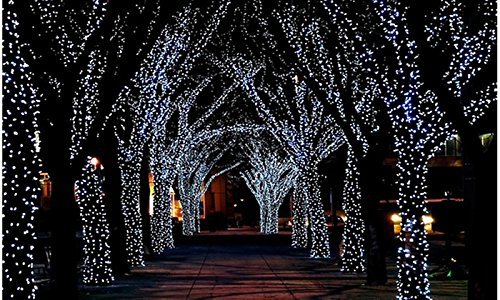 100 Solar Led 17M Lights String in Florida - 4