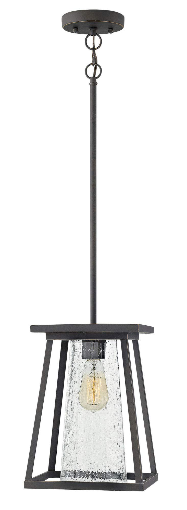 Hinkley 2792OZ-CL Transitional One Light Outdoor Hanging from Burke collection in Bronze/Darkfinish,