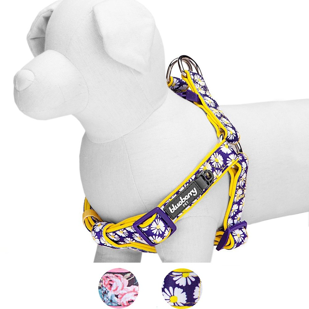 Blueberry Pet 2 Patterns Soft & Comfy Step-in Loving Daisy Prints Padded Dog Harness, Chest Girth 20'' - 26'', Medium, Adjustable Harnesses for Dogs by Blueberry Pet (Image #1)