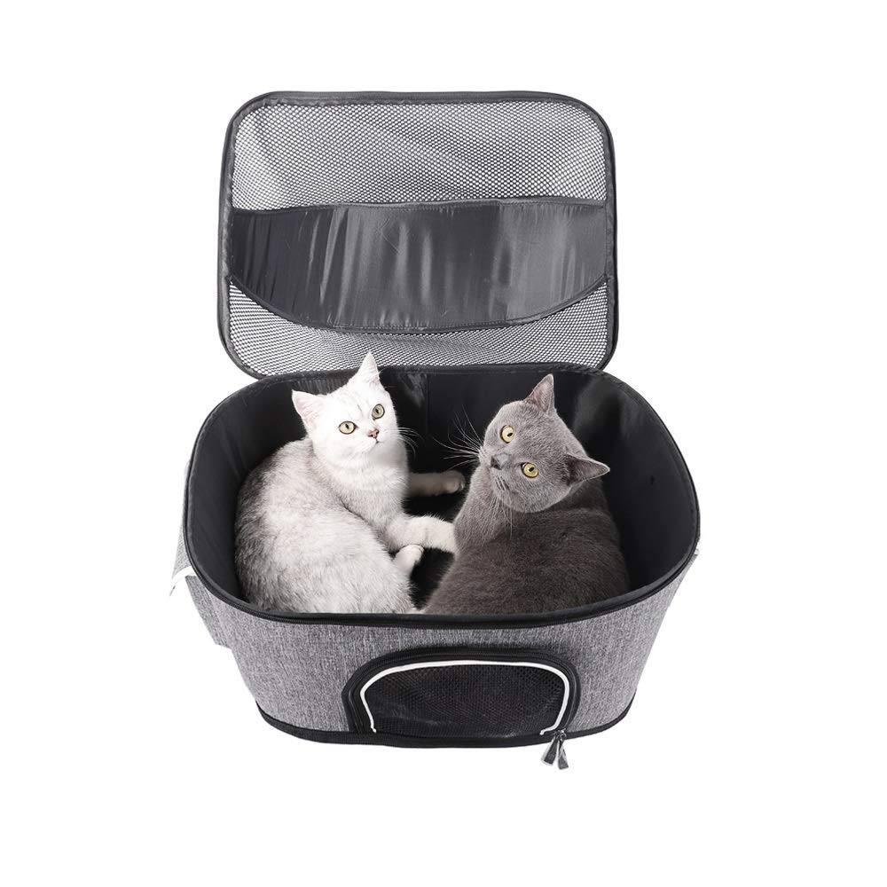 Pet Carrier for Small Dogs, Cats, Puppy, Carrier Bag for Airline, Train, Car Travel