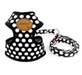 SELMAI Polka Dots Dog Harness Vest Leash Set Paw