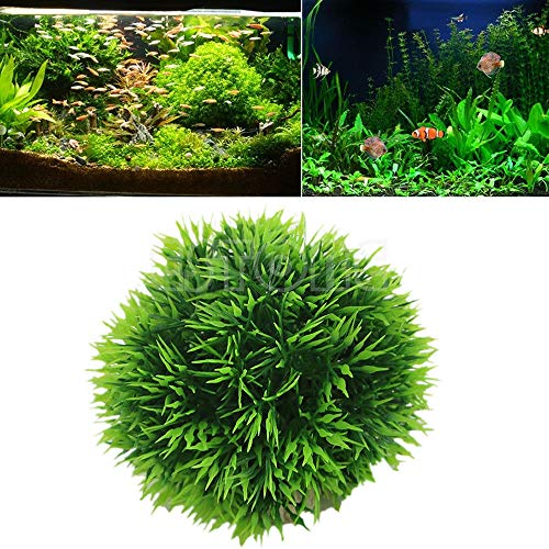 Basket Arrangement Lily (Artificial Plants - 8cm Artificial Fish Tank Grass Ball Moss Simulation Plant Grow Ornament Aquarium Decor Green - Ivy Décor Naturals On Wall Lily Centerpieces Grapes Vase Cheap)