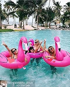 Flamenco Hinchable colchonetas piscina Flotador Gigante de 120cm ...