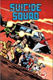 img - for Suicide Squad Vol. 1: Trial by Fire book / textbook / text book