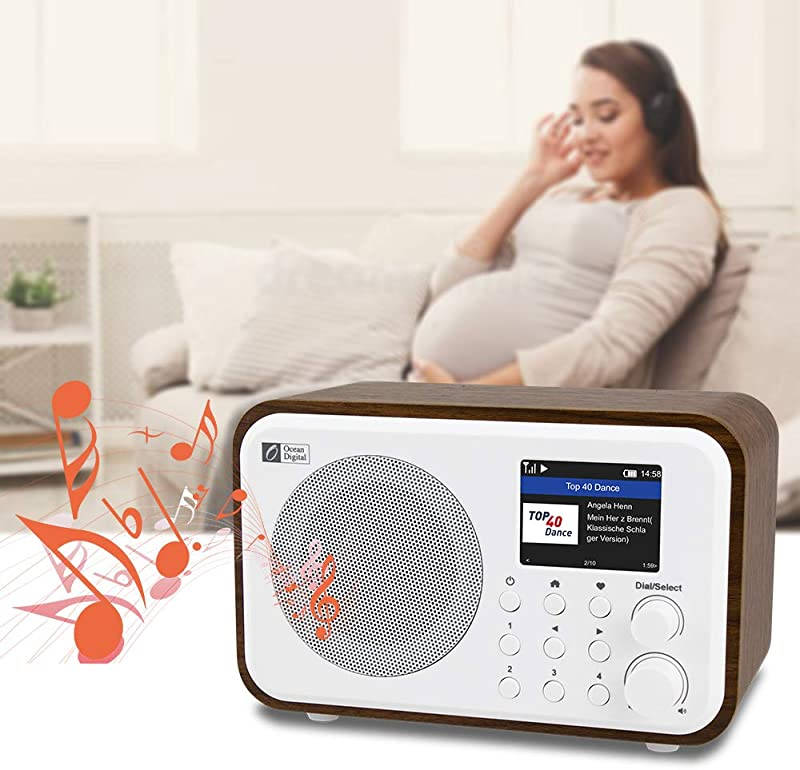 "Ocean Digital WiFi Internet Radios WR-336N Portable Digital Radio with Rechargeable Battery Bluetooth Receiver with 2.4"" Color Display"