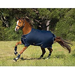 Horseware Amigo Bravo12 Turnout 100g 66 Navy/Blue