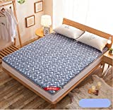 Tatami mattress double-sided embroidery embroidered cotton thickening-B 150x200cm(59x79inch)