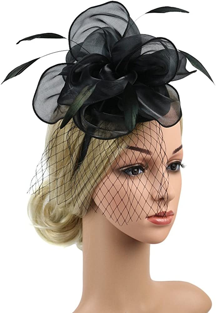 Ladies Mesh Hat Feather Fascinator For Wedding Prom Night Party New
