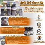 Bulk Tub Fill Kit