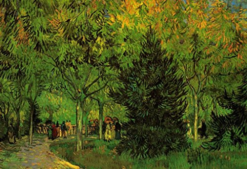 (Vincent Van Gogh A Lane in The Public Garden at Arles 1888 Oil On Canvas Post Impressionist Mural Giant Poster 36x54 inch )