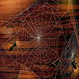 GladsBuy Huge Cobwebs 10' x 10' Digital Printed Photography Backdrop Halloween Theme Background YHA-417