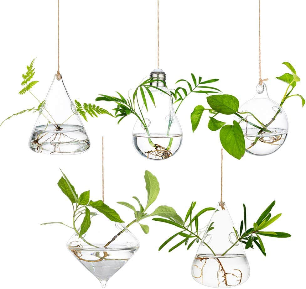 Glass Large Hanging Planters Water Air Plant Succulent Containers Terrarium Kits Candle Holder Indoor Outdoor 2 Holes 5Pcs/Set with Strings Rope for Home Garden Balcony